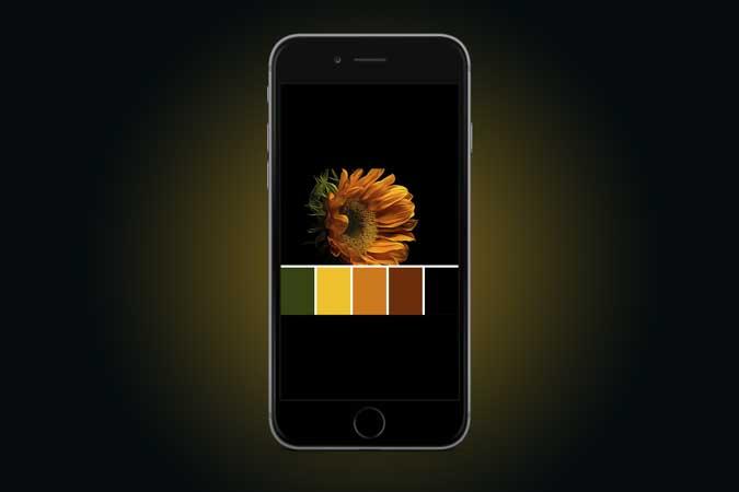 أفضل 7 تطبيقات لوحة ألوان لأجهزة iPhone و iPad