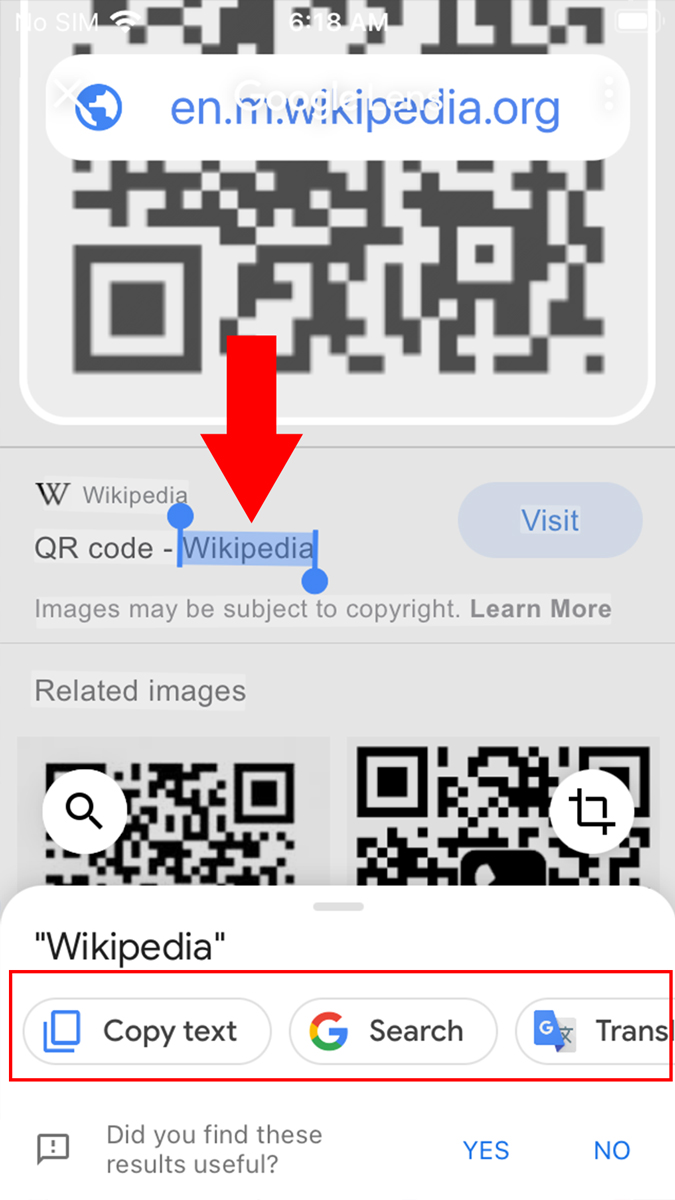 Google Search app for iPhone